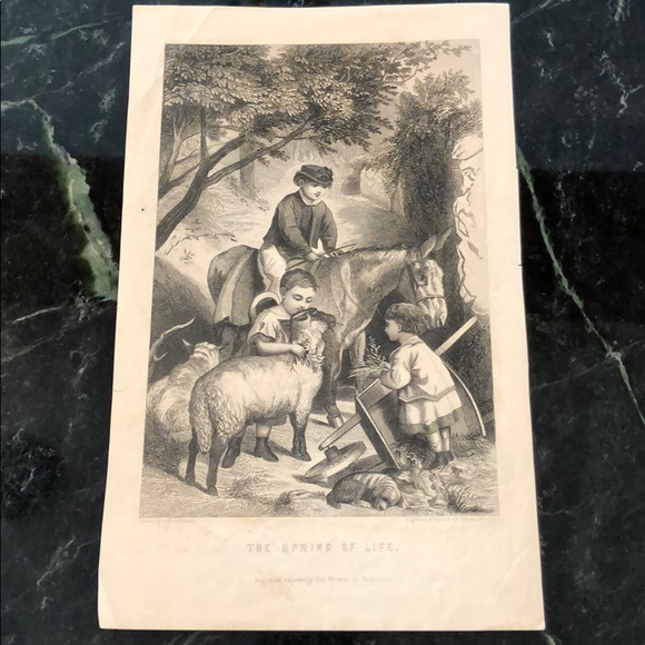 """Vintage Other - The Spring of Life 9"""" x 5.5"""" - Antique Engraving"""